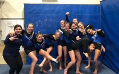 HWRHS Gymnastics:  the best team you've never heard of
