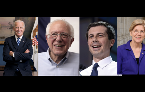 Four Leading Democratic Candidates