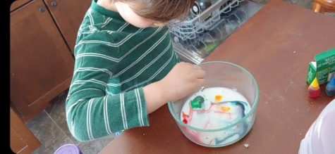 Science experiment with milk, dish soap, and food coloring.