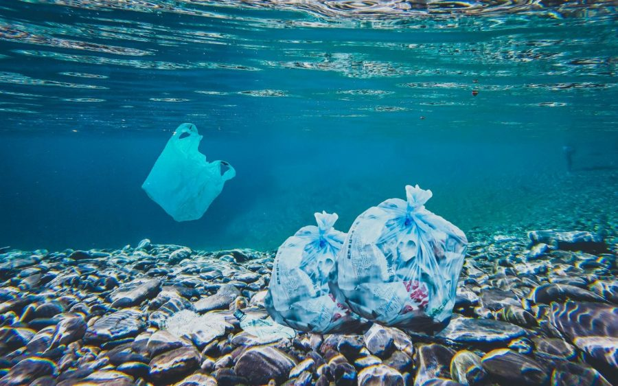 The Great Pacific Trash Patch
